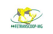 fetranscoop